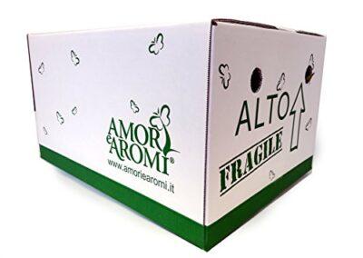 scatola box aromi