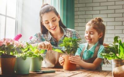 4 piante aromatiche che purificano l'aria di casa in modo naturale